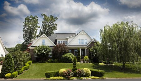 How To Care For Your Yard, Lawn And Garden